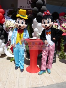 Mickey ve minnie mouse kiralama